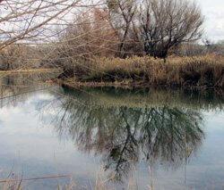 lagoonreflectwintersmsc