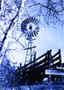 Windmill next to a rancher's loading chute evokes the feeling of the old time Arizona ranches