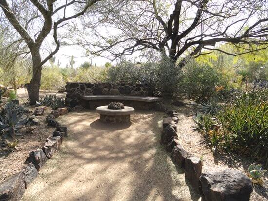 Garden bench under leafless trees, long shadows of winter illustrates sense of respite of the desert in winter