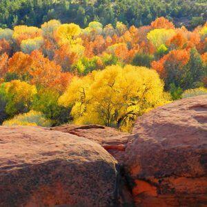 Thanksgiving Weekend Sedona & Hopi