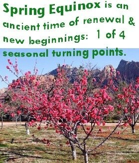 Spring equinox poster with fruit trees in bloom. Show spring equinox as a time of renewal ad new beginnings.